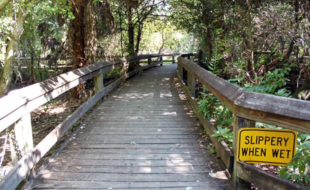 La réserve Naturelle Boyd Hill