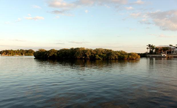 Tour en bateau au large de Tarpon Springs
