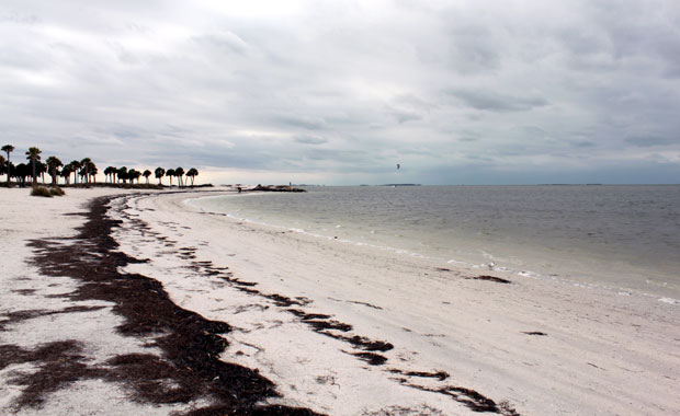 Howard Park - Tarpon Springs