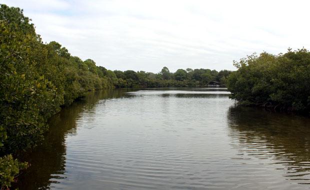 Howard Park - Tarpon Springs