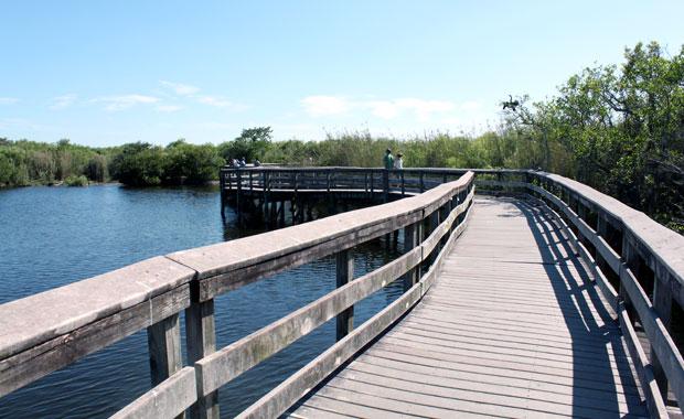 Everglades - Entrée de Homestead