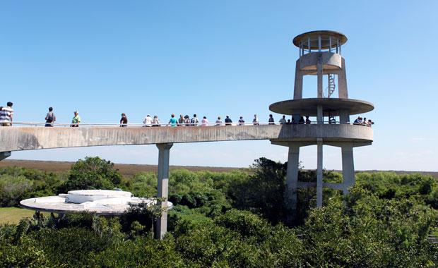 Everglades : Entrée Shark Valley
