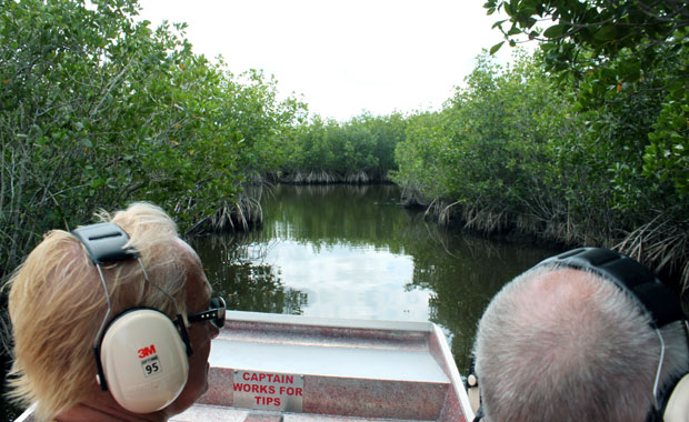 Airboat tour dans les Everglades