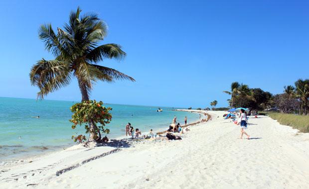 Bilan de mon année en Floride