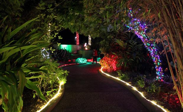 Le jardin botanique de Largo tout en lumière