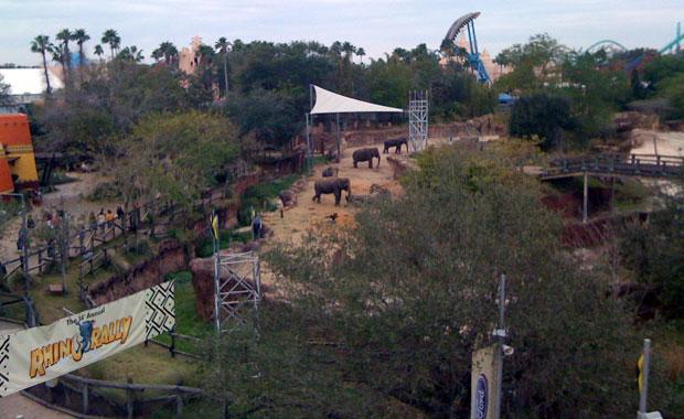 Busch Gardens en Semaine