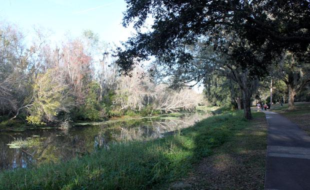 Fin d'après-midi à Sawgrass Lake Park