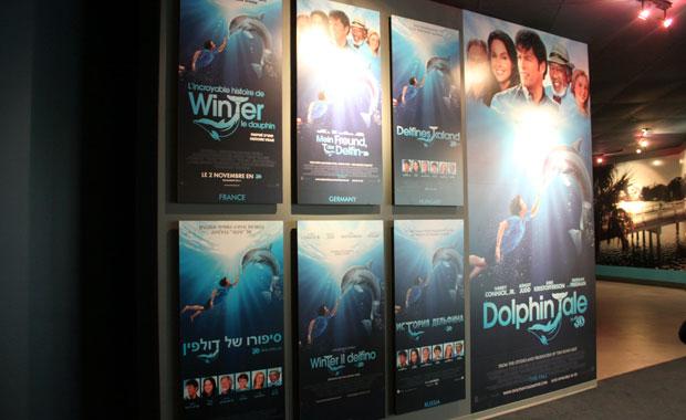 Visite du Musée du film Dolphiin Tale